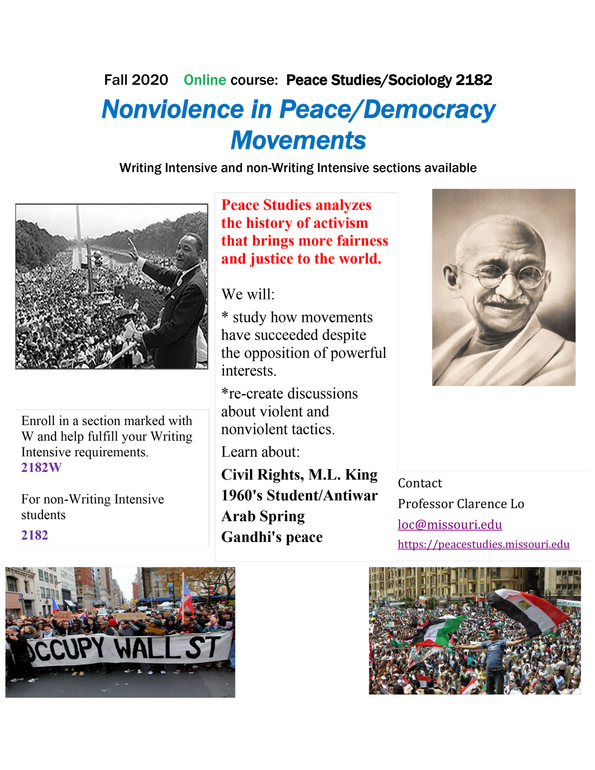 PEA_ST 2182 and 2182W, cross-listed.   Democracy Movements.  100% Online